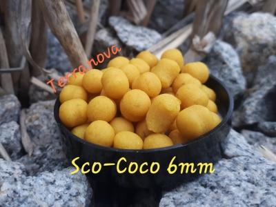 Dumbell Terranova 6 mm Sco-Coco